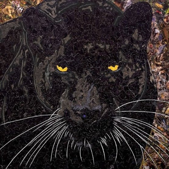gallery/black panther 600 px